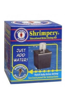 San Francisco Brine Shrimp Shrimpery