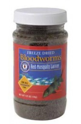 San Francisco Freeze Dried Bloodworms 14gm