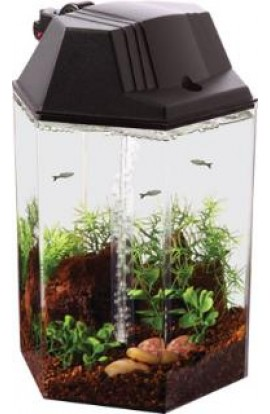 Koller Kraft Betta Hex Tank Kit 1.7gal