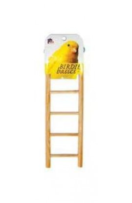 Prevue PV383 Birdie Basics Ladder 5 Step