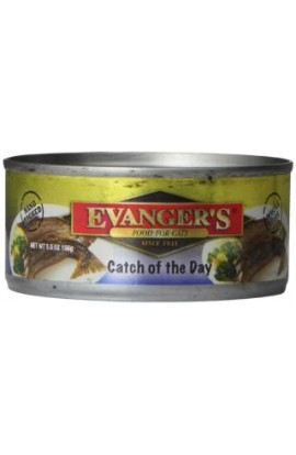 Evanger's Mackerel W/Gravy Cat 24/5.5Oz
