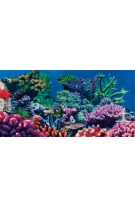 "Static Cling Background Coral 36"" X 18"
