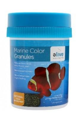 Elive Color Marine Granule Food 6z